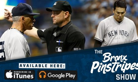Wide Bronx Pinstripes Show Image (1)